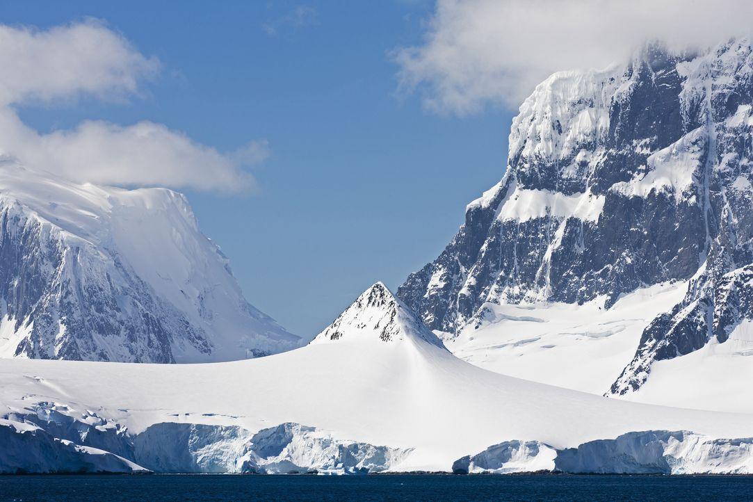 Fund in der Antarktis - Bildquelle: Fotofeeling - www.superstock.com