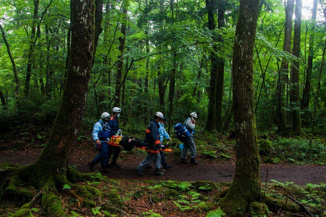Gibt es sie wirklich, die Orte des Schreckens? Man hört von Wäldern, die den... - Bildquelle: Zuma Press