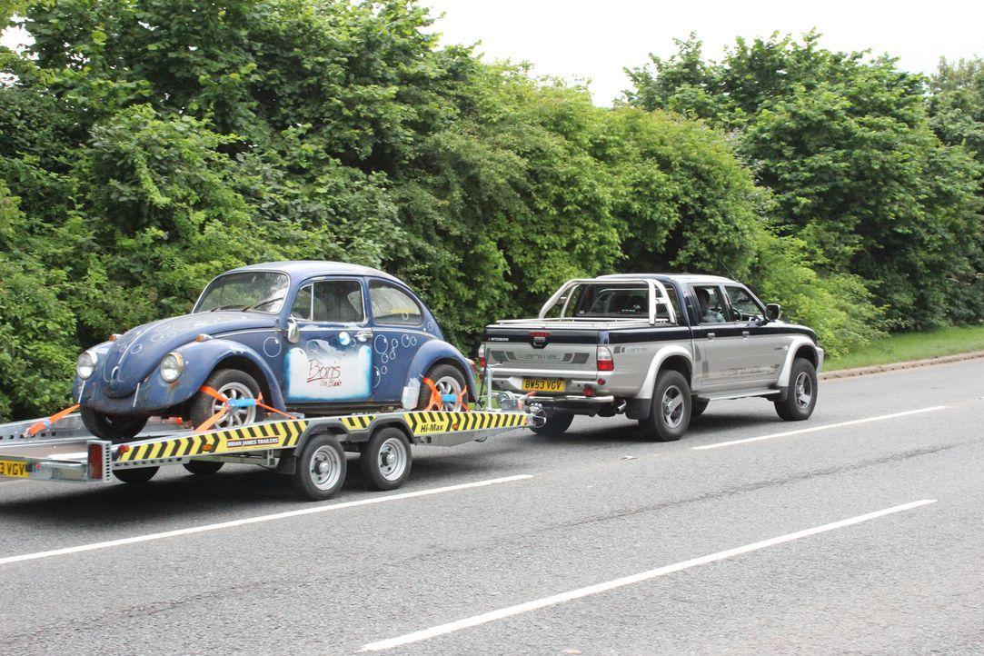 Fuzz und Tim verhelfen heute Boris' altem VW Käfer zu neuem Glanz. Der Wagen... - Bildquelle: 2012 NGC Network International, LLC All Rights Reserved