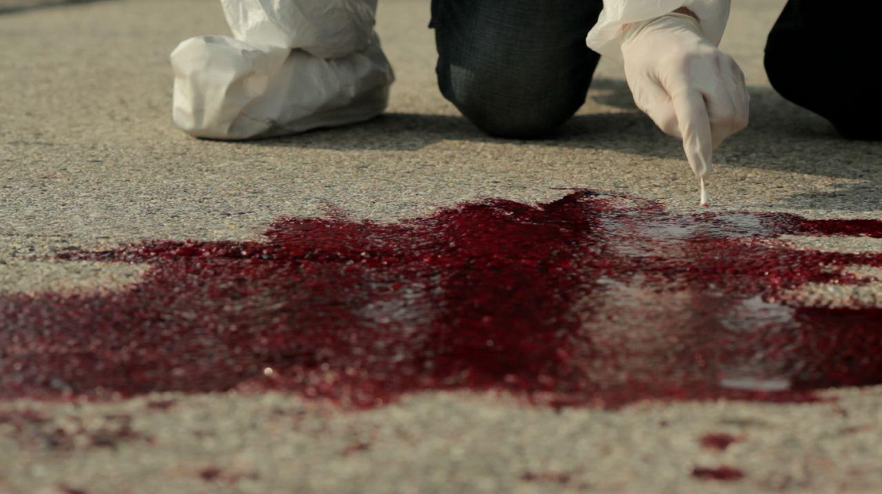 Geben die Blutspuren am Tatort der Polizei wichtige Hinweise darauf, wer Theresa Wesolowski aus Germantown, Wisconsin erstochen hat? - Bildquelle: LMNO Cable Group