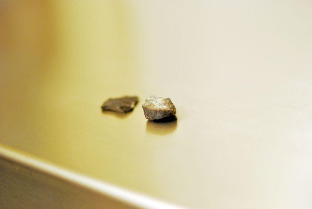 Gibt es Aliens wirklich? Dieses Mal untersucht Don Wildman mysteriöse Gesteinsbrocken, die die Existenz von Außerirdischen beweisen könnten .. - Bildquelle: 2012, The Travel Channel, L.L.C. All rights Reserved.