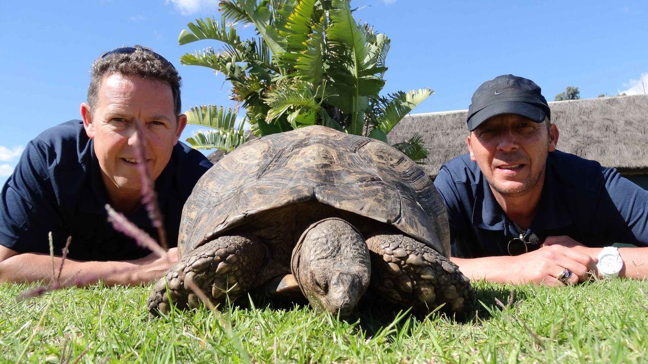 Toto (l.) und Harry (r.)  sind auf Patrouille mit den südafrikanischen Rangern - gemeinsam gehen sie zu Land und zu Wasser auf die Jagd nach Wildere... - Bildquelle: kabel eins