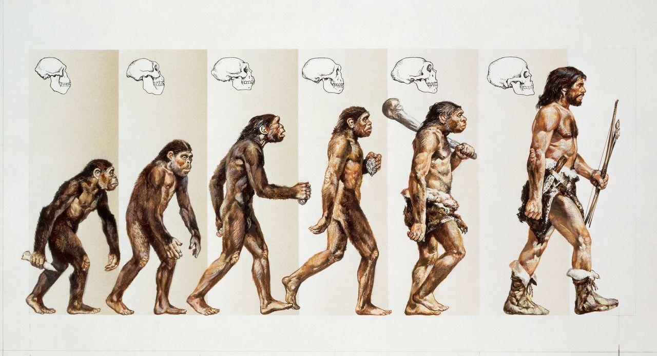 Die Theorie des Welteneis gibt es in vielen unterschiedlichen Kulturen, von ... - Bildquelle: SuperStock