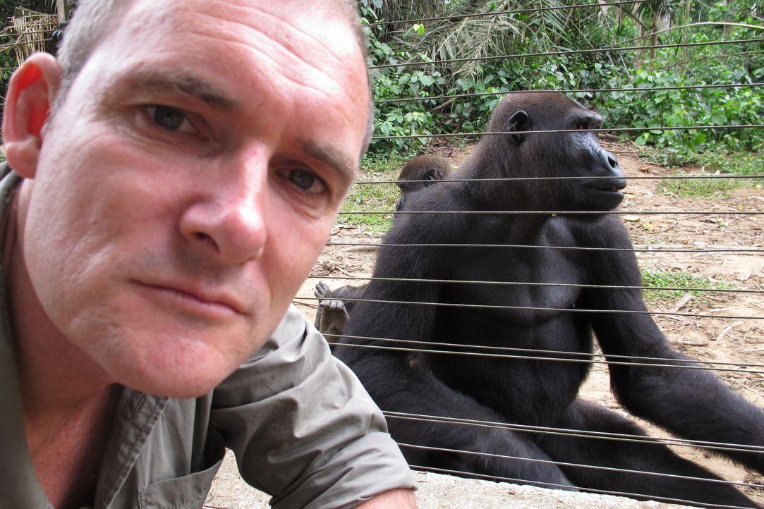 """""""Unreported World""""-Reporter Evan Williams (Bild) besucht Einwohner Kameruns, die sogenanntes """"bushmeat"""", also das Fleisch von Affen verzehren. In Au... - Bildquelle: Quicksilver Media 2012"""