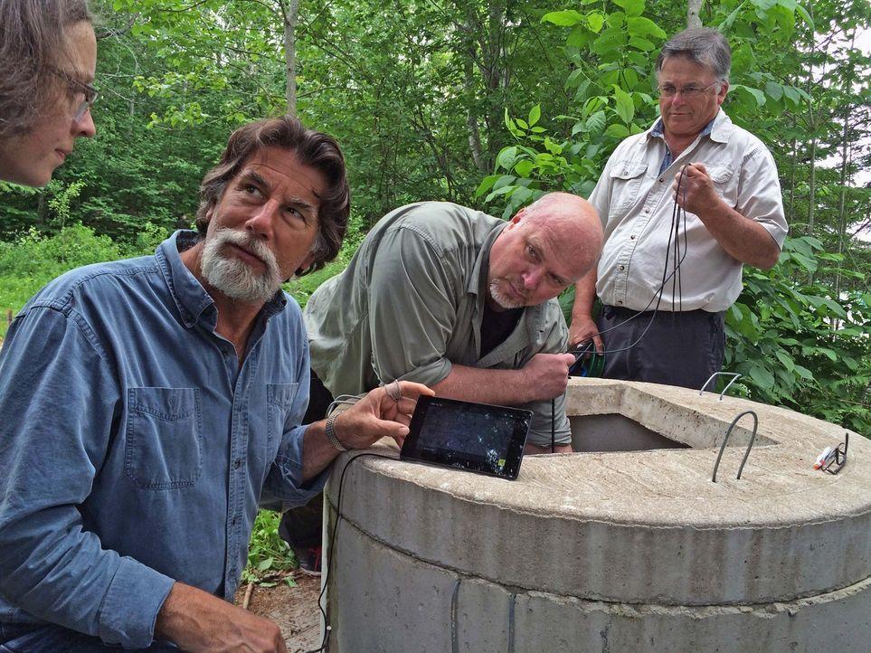 Die Schatzsucher Von Oak Island Der Fund