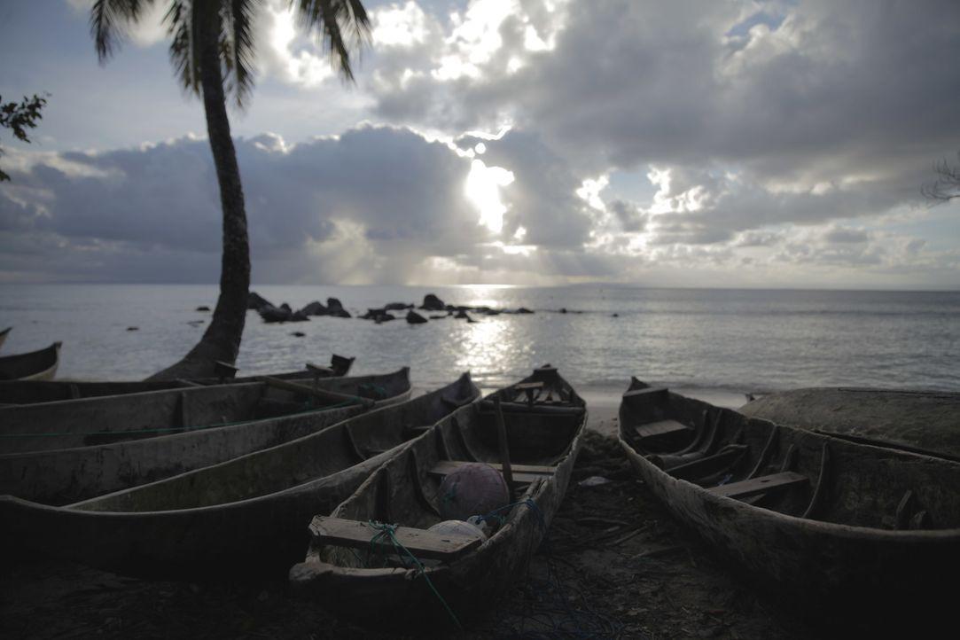 Wrack vor Madagaskar - Bildquelle: A&E Television Networks, LLC