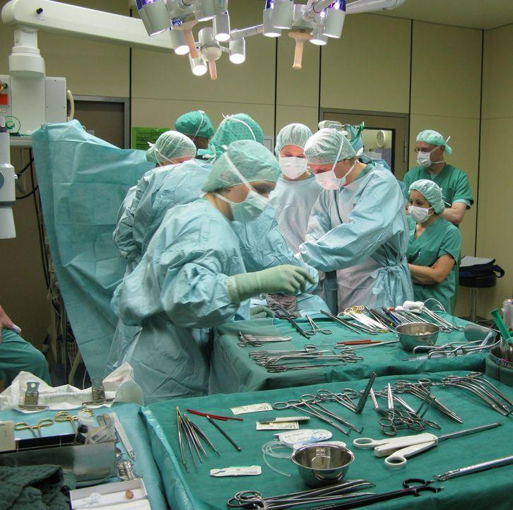 Das Team um Prof. Dr. med. Matthias Schwarzbach (3.v.r.) arbeitet im OP Hand in Hand. Der Chirurg ist am Klinikum Höchst nicht nur Chefarzt, sondern... - Bildquelle: kabel eins
