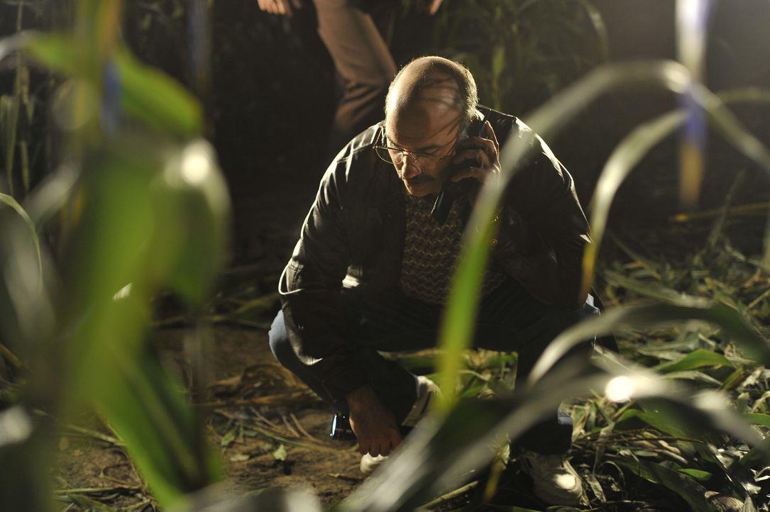 Eine Leiche im Maisfeld sorgt bei Detective Cummans (Ido Visentin) und seinen Kollegen für Verwirrung. Was ist hier geschehen und warum musste die b... - Bildquelle: Jag Gundu Cineflix 2012