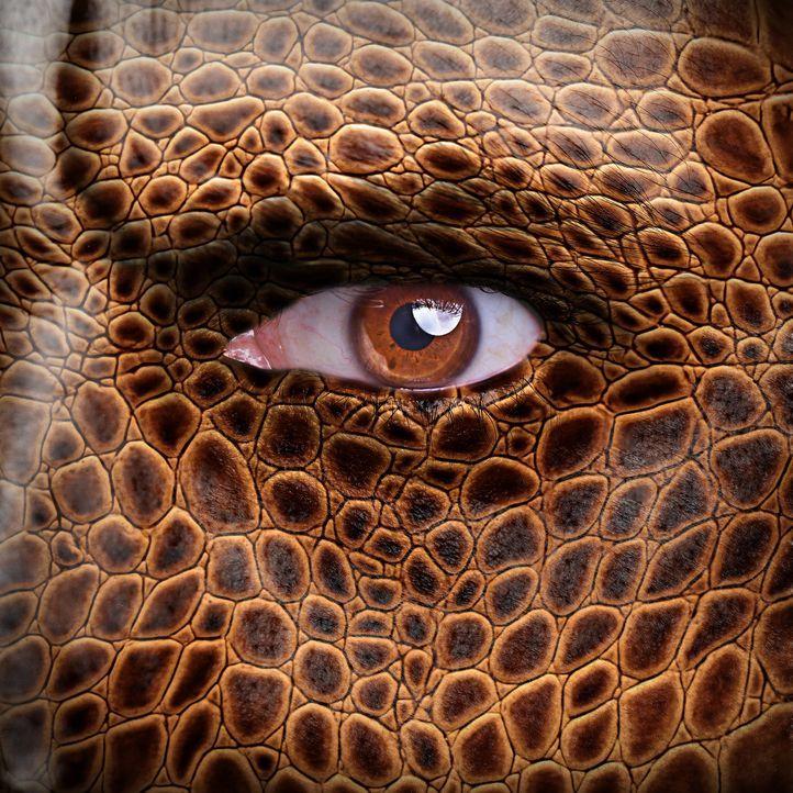 Schlangenwesen gehören zum festen Repertoire der Science-Fiction-Mythologie. In China und Japan behaupteten viele Herrscher, Nachfahren von Drachen... - Bildquelle: Pond5, Inc.