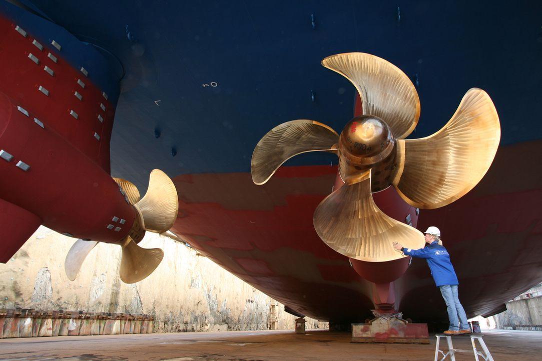 """Im Jahr 2008 wurde der Luxusliner """"Independence of the Seas"""" als der größte seiner Art vorgestellt. Mit seinen 18 Stockwerken wiegt er so viel wie 4... - Bildquelle: Roy Riley sbw-photo"""