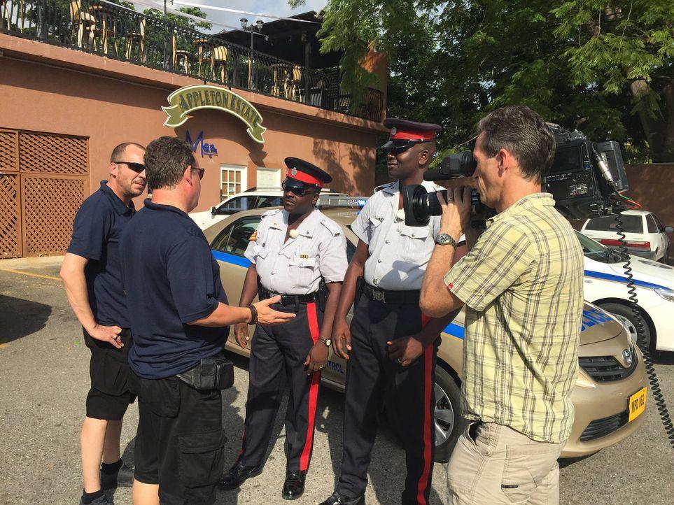 Schnell wird Toto (2.v.l.) und Harry (l.) bewusst, dass die Kriminellen in Jamaika vor nichts zurückschrecken ... - Bildquelle: kabel eins