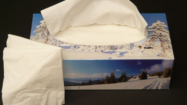 Papiertaschentücher sind schon lange fester Bestandteil vieler Haushalte.