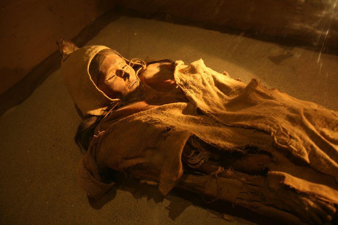 Alienforscher sind sich sicher, dass sich die aussagekräftigsten Beweise für... - Bildquelle: Qin peng xj - Imaginechina