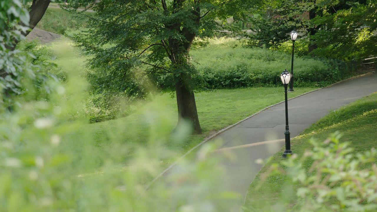 """Auch wenn New Yorks Central Park heute sein """"Golden Age"""" feiert, gibt es neue Bedrohungen durch wachsende Megatower der Metropole. NYC braucht seine... - Bildquelle: Indigo Films/ DCL"""