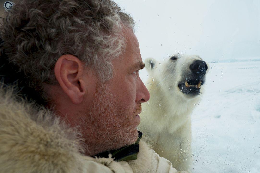 Begleitet eine wilde Eisbärenfamilie über mehrere Monate hinweg: Kameramann Gordon Buchanan ... - Bildquelle: Gordon Buchanan