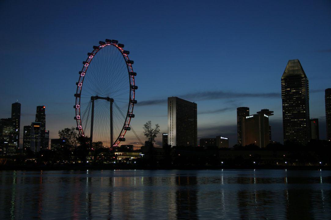 """Das Riesenrad  """"Singapore Flyer"""", ist mit stolze 165 Meter hoch. Gelegen in einem Park in Ufernähe, bietet das Riesenrad einen schönen Ausflug in lu... - Bildquelle: Martin Gorst Martin Gorst"""