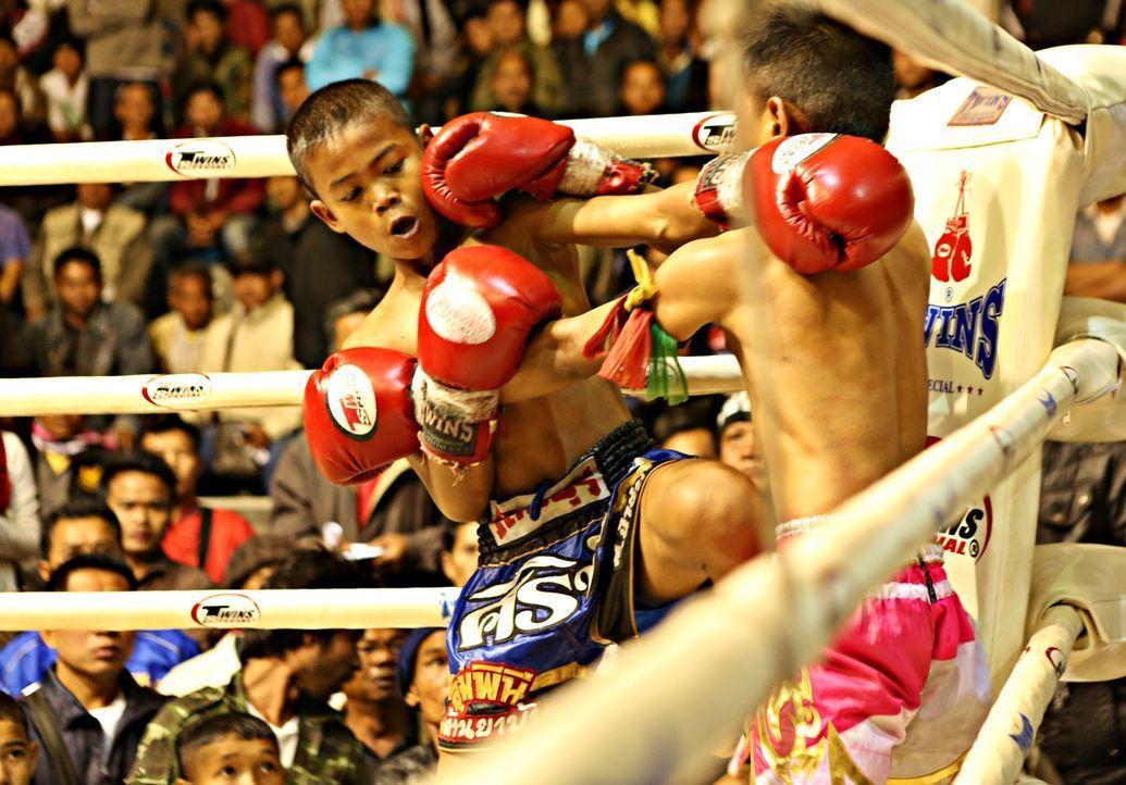 Muay Thai Boxen ist in Thailand äußerst beliebt. Hierbei werden kleine Kinder in den Ring geschickt - für Ruhm und Geld ... - Bildquelle: Quicksilver Media 2012