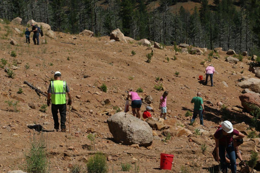 Joe (l.) und seine Familie laden eine Gruppe Pfadfinder zu sich auf das Grubenfeld ein, um deren Liebe zum Graben zu wecken ... - Bildquelle: High Noon Entertainment, 2015