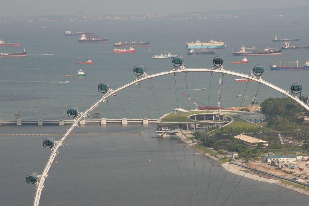 """Das ist mal ein Ausblick! Das zweitgrößte Riesenrad der Welt, der """"Singapore Flyer"""", ist stolze 165 Meter hoch. Gelegen in einem Park in Ufernähe, b... - Bildquelle: Martin Gorst Martin Gorst"""