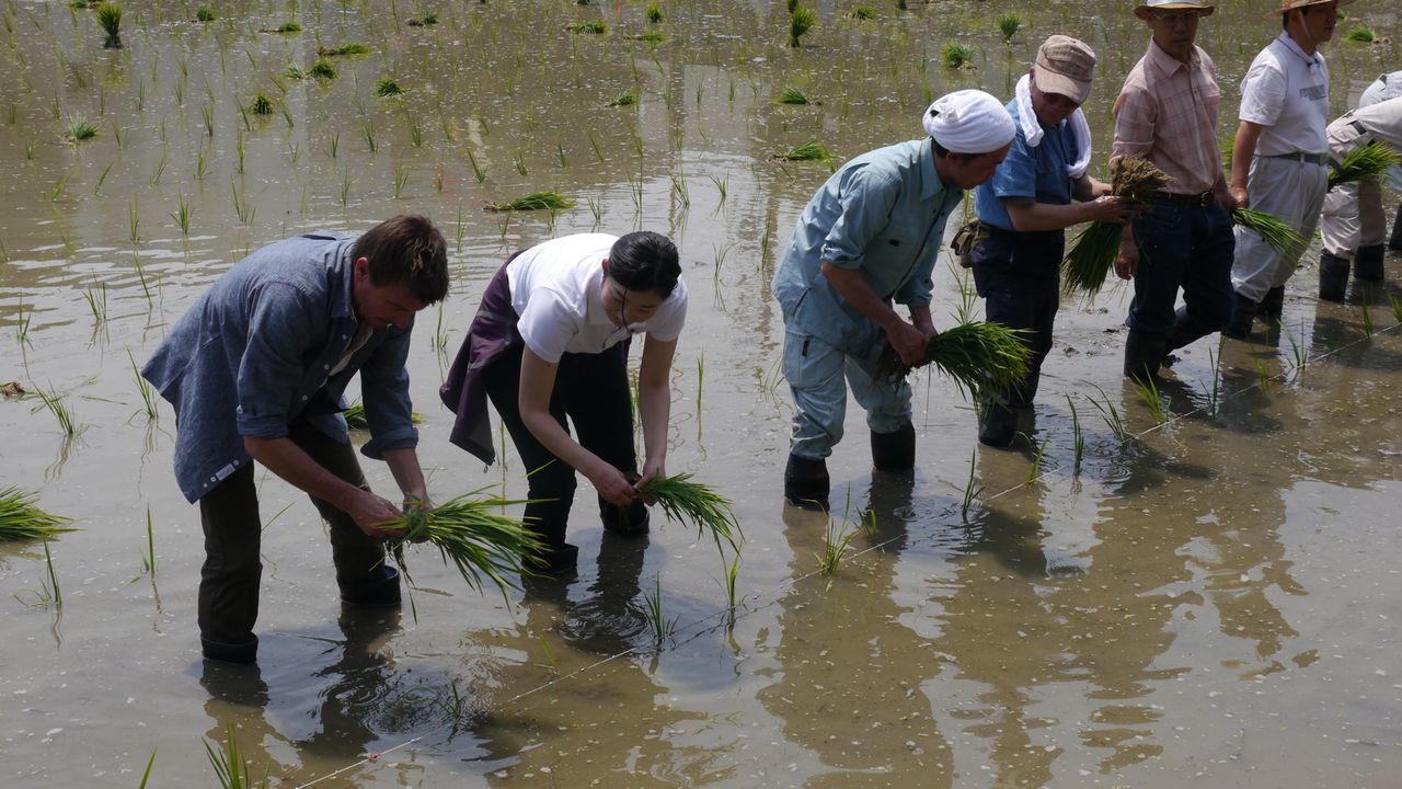 """Beim """"Otaue Rice Planting""""- Festival pflanzt Jack Maxwell (l.) für die Herstellung des Reisweins Sake selbst Reis ein. Jedes Jahr beten, tanzen und... - Bildquelle: 2014, The Travel Channel, L.L.C. All Rights Reserved."""