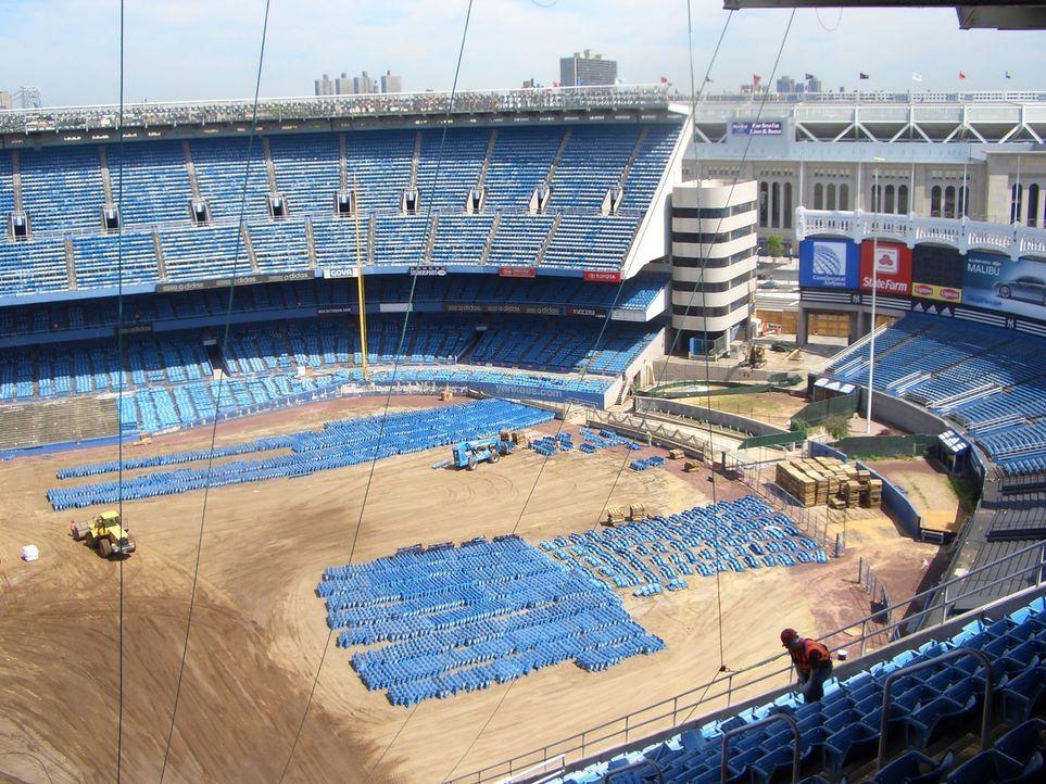 Das Yankee Stadion - Bildquelle: NGT