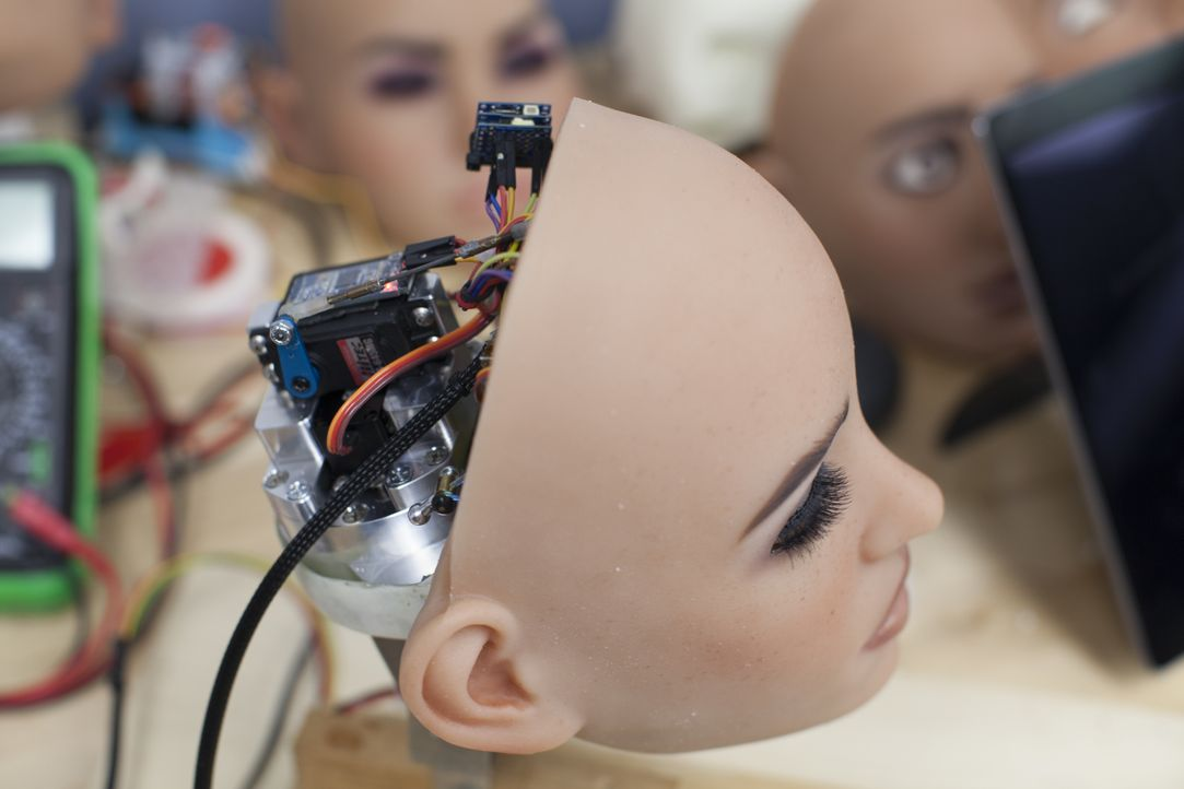 The Sexbots Are Coming - Bildquelle: Licensed by Passion Distribution Ltd.