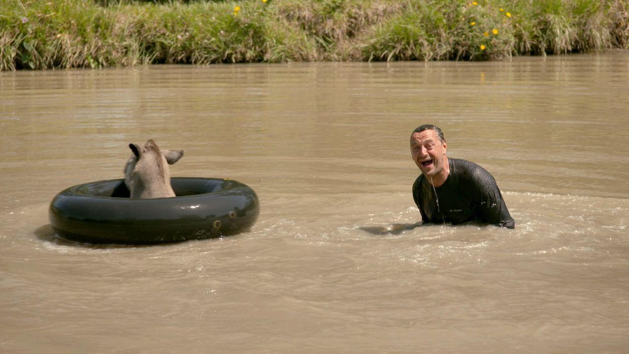 Irgendwo im Nirgendwo Paraguays: Globetrotter Tom Waes plantscht mit schwimmenden Ur-Pferden. Er ist äußerst gespannt, wen er auf seiner abenteuerli... - Bildquelle: 2013 deMENSEN