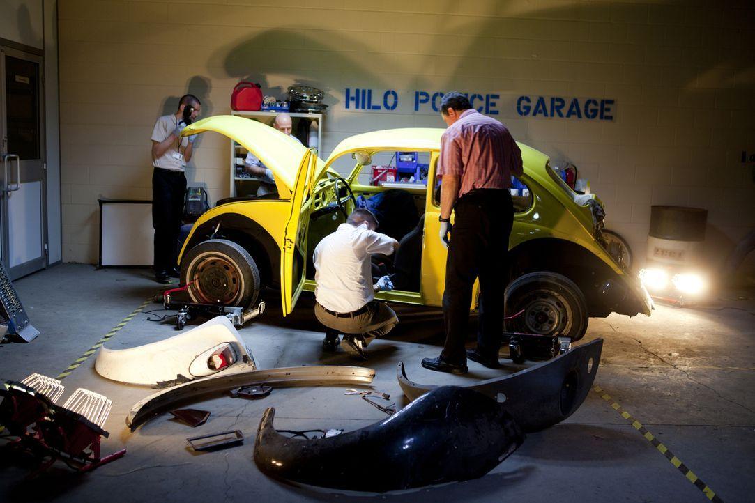Auf der Suche nach Beweisen: Hat der gelbe Beetle Mordopfer Dana Ireland angefahren und sein Fahrer die 23-jährige Touristen vergewaltigt und ermord... - Bildquelle: Darren Goldstein Cineflix 201