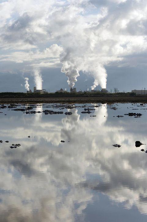 Lokomotiven oder Raddampfer aus dem 19. Jahrhundert wurden mit Dampf betrieben. Dampf als Energiequelle ist heutzutage auch wieder ein Thema, denn G... - Bildquelle: Cal Energy