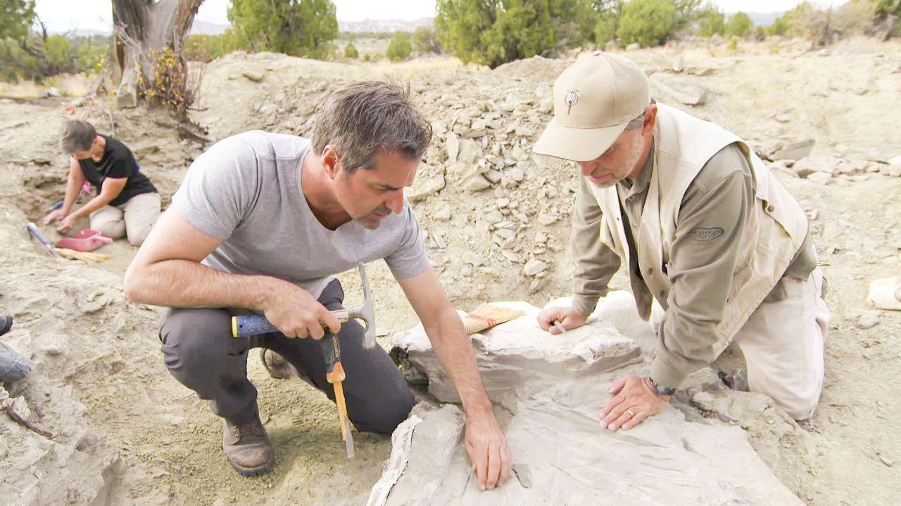 Das Leben und Sterben der Dinosaurier ist eines der größten Mysterien der Me... - Bildquelle: 2018, The Travel Channel, LLC. All Rights Reserved.