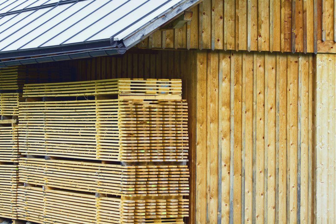"""Wie entsteht aus einem Berg Holz in kurzer Zeit eine teure Villa? """"Moderne Wunder"""" erklärt die wichtigsten Produktionsprozesse... - Bildquelle: 2013 A& E Television Networks, LLC. All Rights Reserved."""