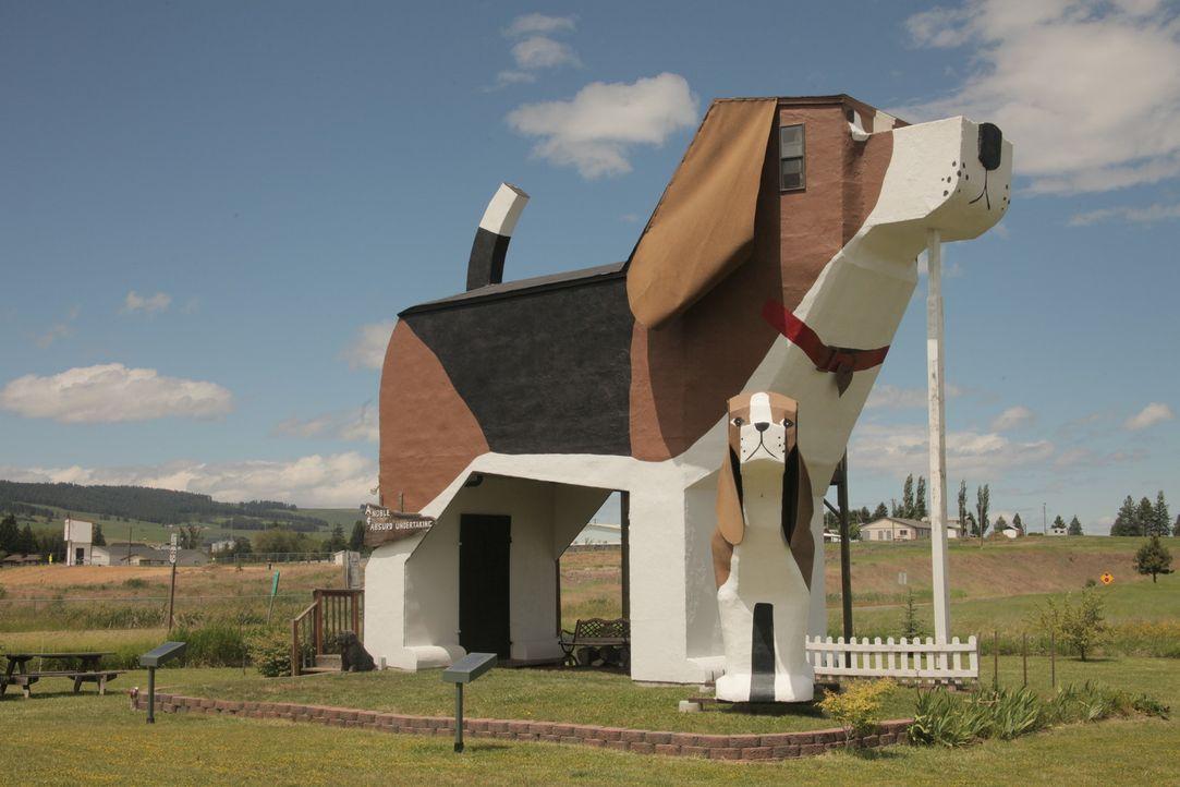 Schiffsrumpf-Haus und Schlangen-Haus - Bildquelle: 2012, HGTV/Scripps Networks, LLC. All Rights Reserved