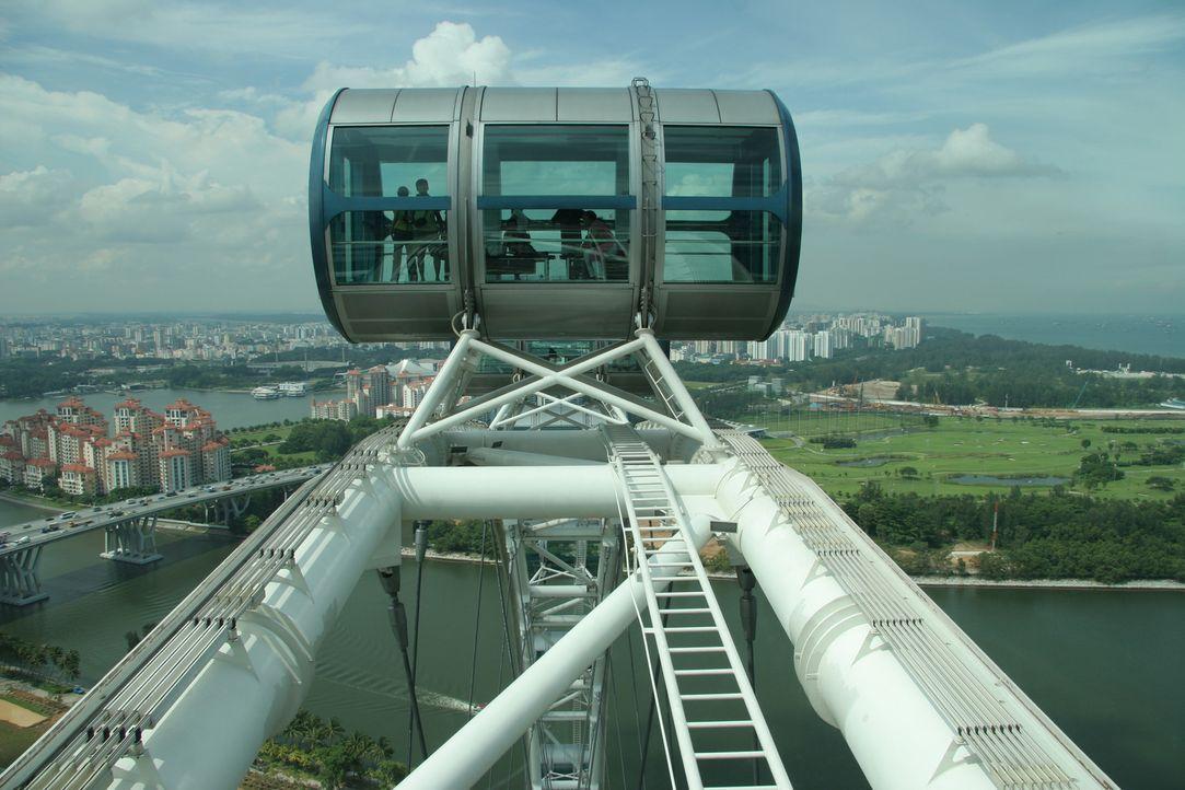 """Das zweitgrößte Riesenrad der Welt, der """"Singapore Flyer"""" ist stolze 165 Meter hoch, liegt einem Park in Ufernähe und einen schönen Ausflug in lufti... - Bildquelle: Martin Gorst Martin Gorst"""