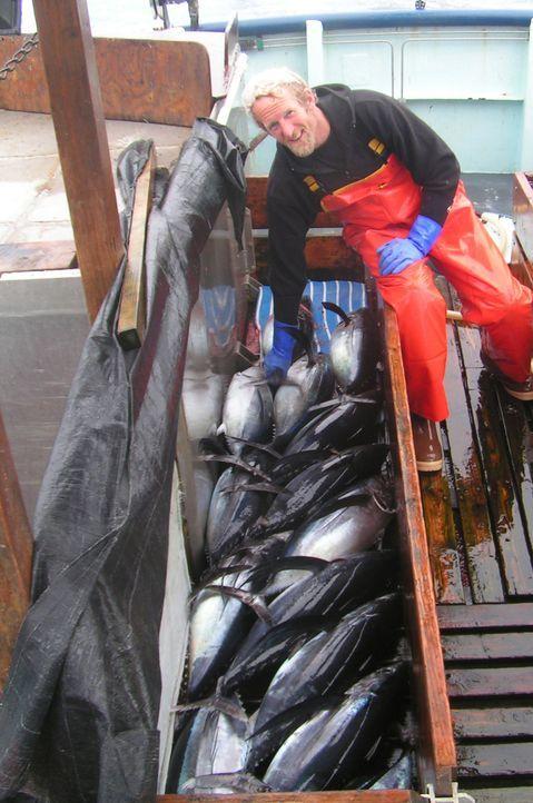 """Bei """"Moderne Wunder"""" dreht sich dieses Mal alles um den beliebten Thunfisch ... - Bildquelle: Jupiter Images"""