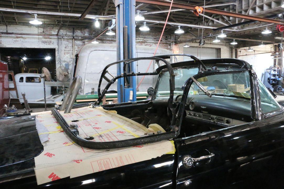 Dan von Fantomworks besorgt seinem Kunden Ian einen GTO Thunderbird, der schneller ist als der Wind.  Doch sie haben noch jede Menge Arbeit vor sich... - Bildquelle: New Dominion Pictures LLC.