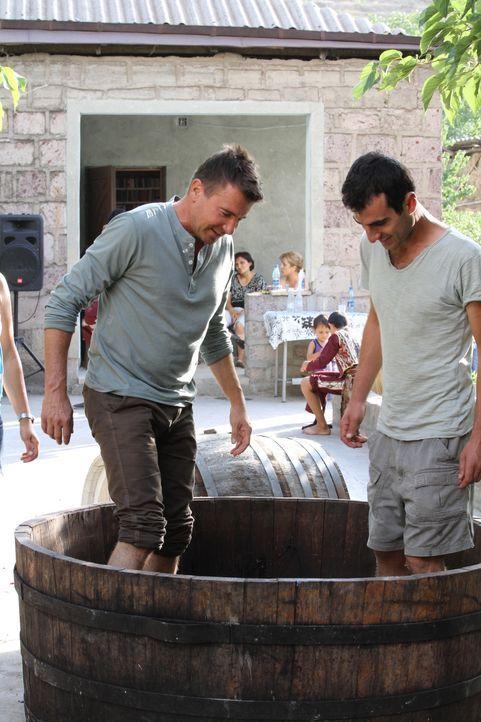 Mit vollem Körpereinsatz hilft Jack Maxwell (l.) in Armenien bei der Weinherstellung und stampft die Trauben von Noahs Arche ... - Bildquelle: 2014, The Travel Channel, L.L.C. All Rights Reserved.