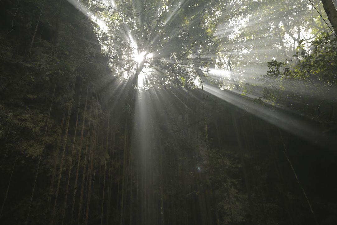 In Mexiko geht Josh dem Untergang des prächtigen Maya-Reiches auf den Grund und taucht dafür auch in die Tiefen des Dschungels ab ... - Bildquelle: 2015, The Travel Channel, L.L.C. All Rights Reserved.