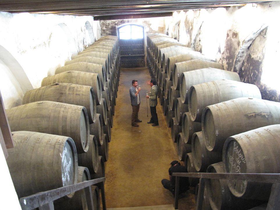 Auf der Suche nach edlen Tropfen in Spanien: Bar-Profi Jack Maxwell (l.) reist um den Globus, um die interessantesten Drinks der Welt zu entdecken ... - Bildquelle: 2014, The Travel Channel, L.L.C. All Rights Reserved.