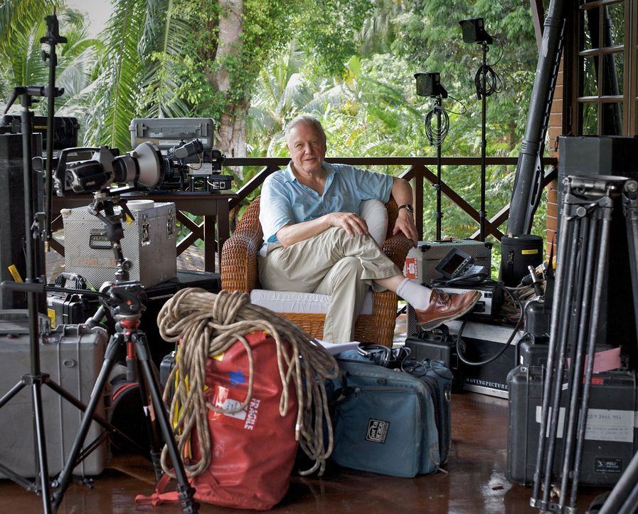 Seit mehr als 50 Jahren reist der britische Dokumentarfilmer Sir David  um die Welt, um die atemberaubende und intime Wildtiere zu filmen. Nun blick... - Bildquelle: BBC 2012  All Rights Reserved