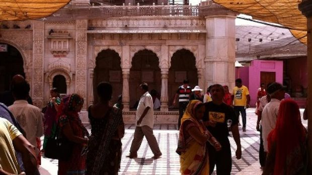 Der Karni-Mata-Tempel