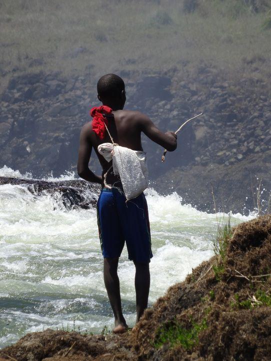 Die zweite Folge der Doku-Reihe führt die Zuschauer zu den größten Naturwundern, die durch die Kraft des Wassers geformt wurden: die Viktoriafälle,... - Bildquelle: 2015 BBC