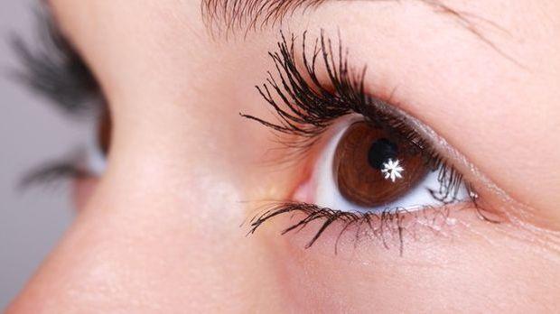 Die Augen sind für die visuelle Wahrnehmung zuständig.
