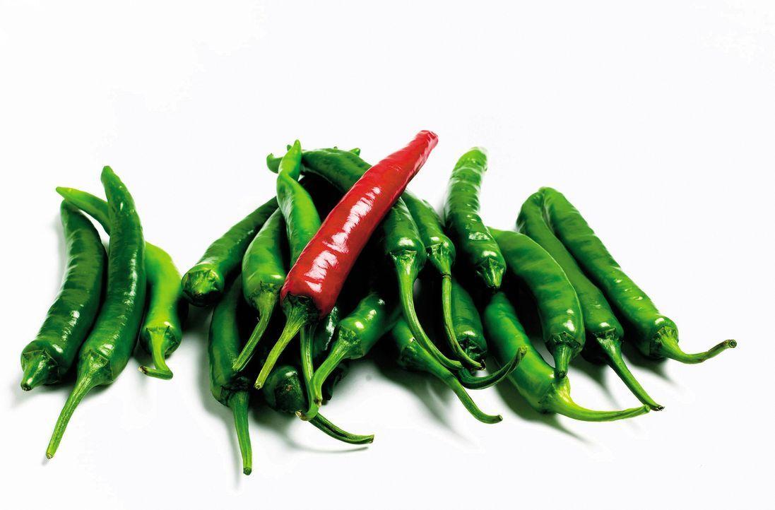 """Scharf, schärfer, Chili: """"Moderne Wunder"""" besucht einen heißen Chili-Kochwettbewerb im Süden der USA und stattet den Herstellern der Tabasco-Soße ei... - Bildquelle: Courtesy Jupiter Images"""