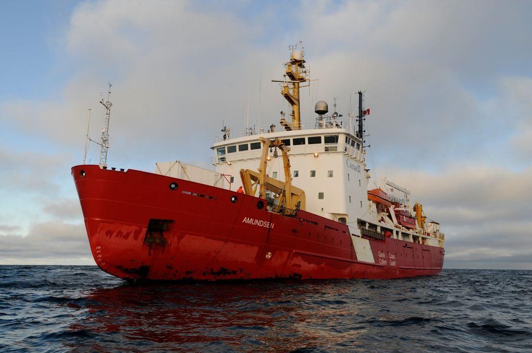 Das Canadian Coast Guard-Schiff Amundsen ist einer der seltenen Forschungseisbrecher, deren Aufgabe es ist, die Antarktis zu erkunden und gegen die... - Bildquelle: Exploration Production Inc.