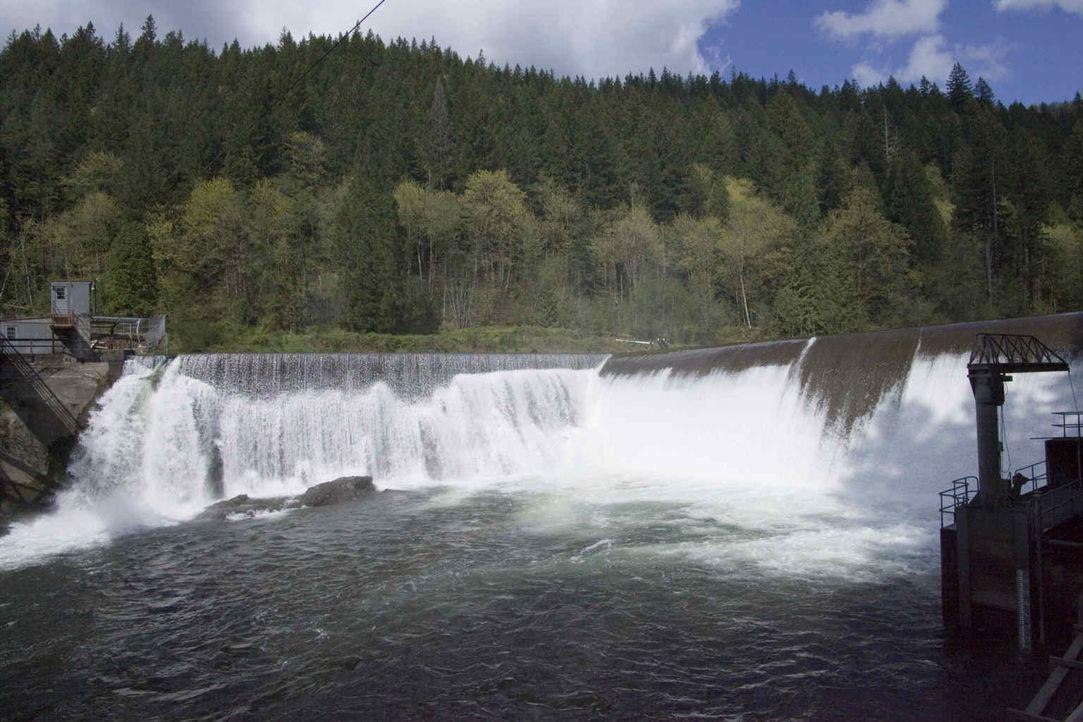 Der Marmot Damm im amerikanischen Bundesstaat Oregon ist ein waghalsiges Abrissprojekt. Jahrelang hat er die Fluten des Sandy Rivers gestaut, um Str... - Bildquelle: NGT