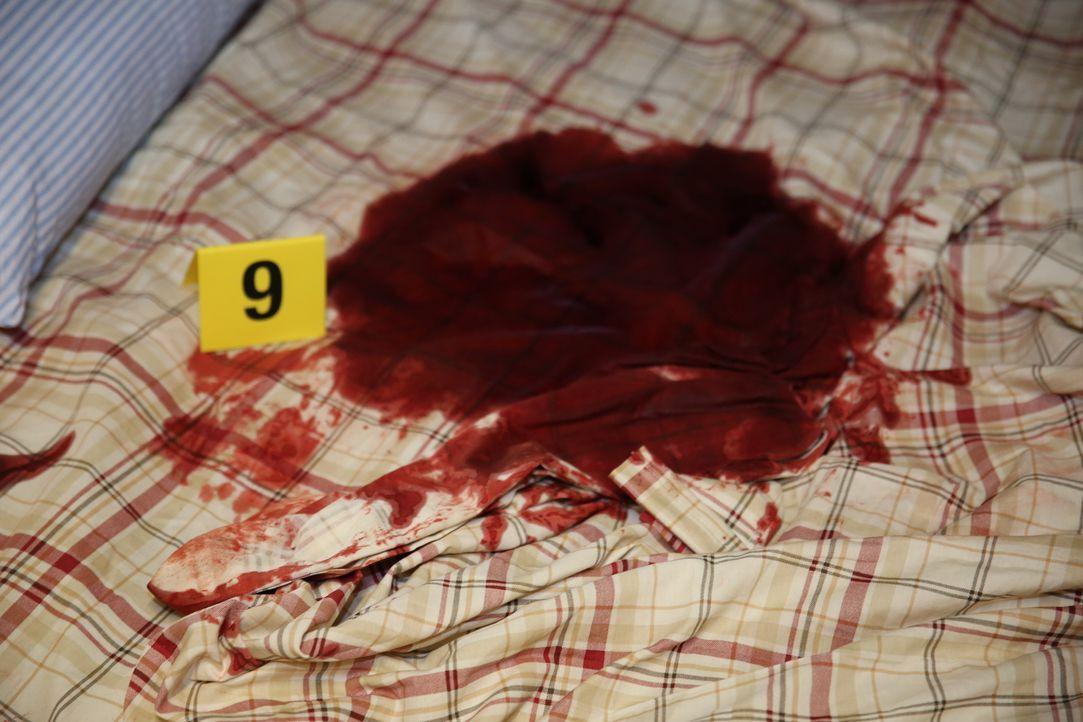 Tatort Schlafsofa: Als Lt. Joe Kenda nach dem Mord an dem 28-jährigen Curtis Ashley die Blutlache inspiziert, sucht er nach ersten Hinweisen auf den... - Bildquelle: Jupiter Entertainment