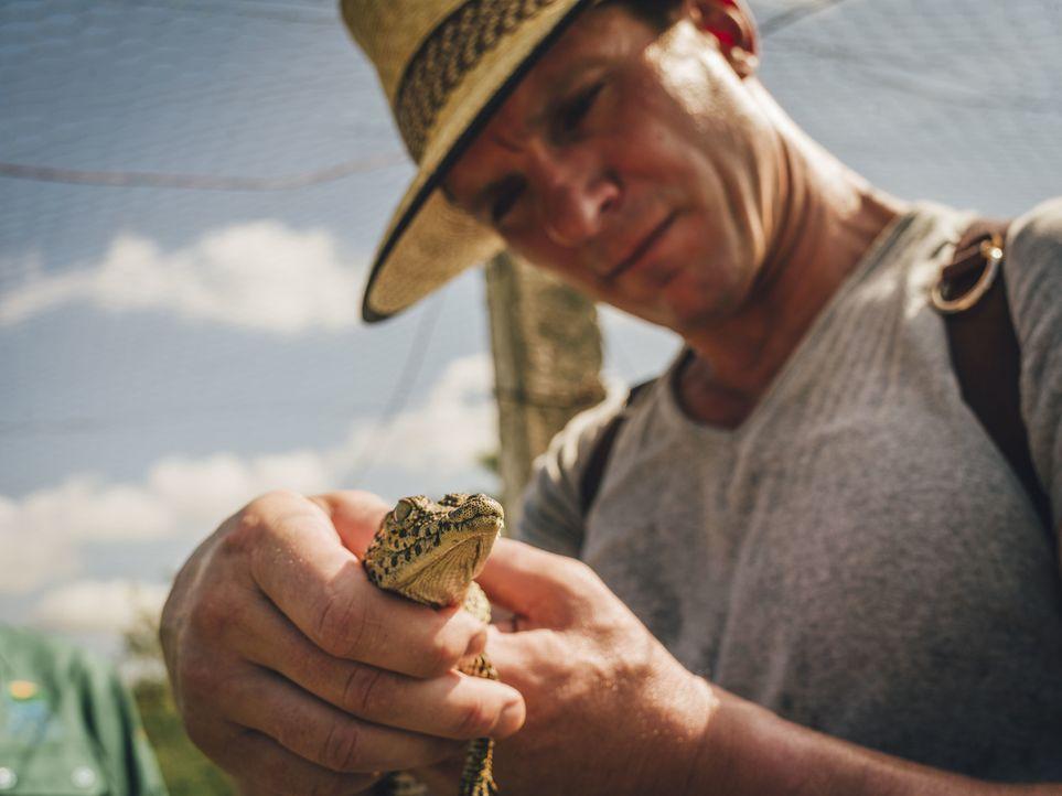 Bill Weir reist nach Kuba und begutachtet die Situation auf der Insel ... - Bildquelle: Bill Weir 2015 Cable News Network. A Time Warner Company. All Rights Reserved.