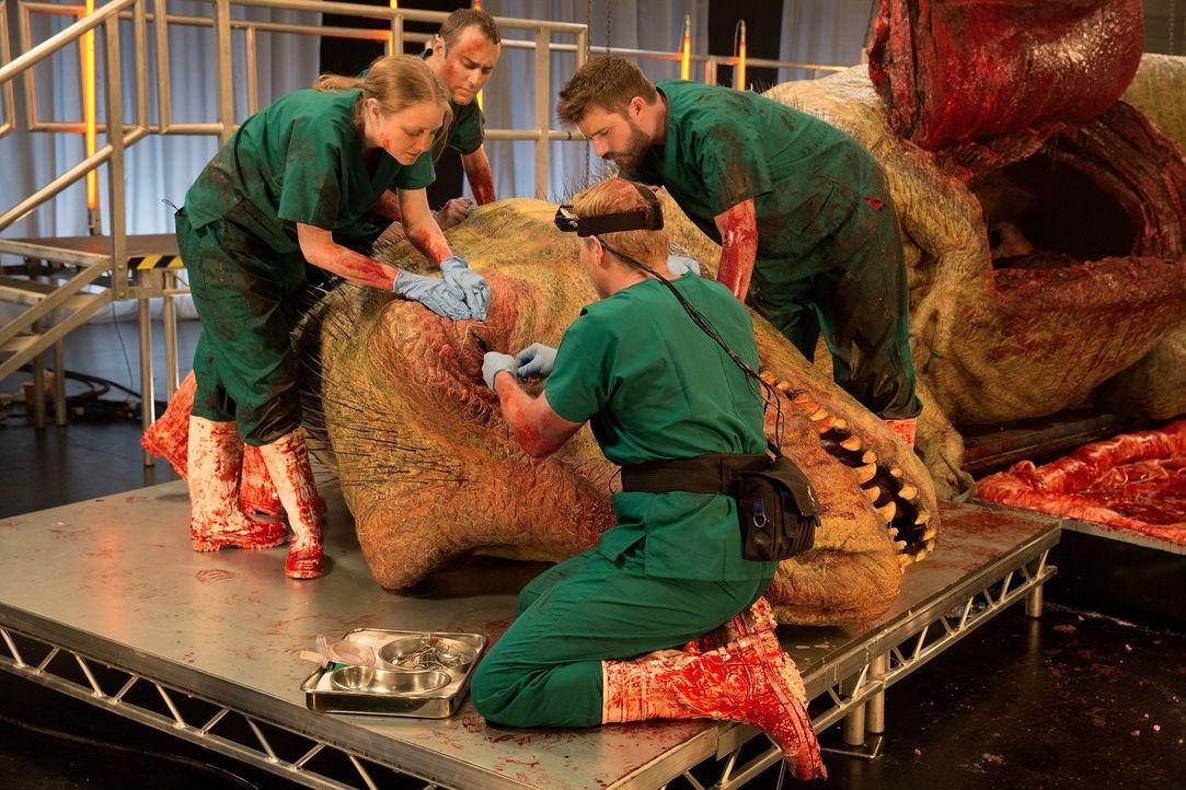 Die lebensnahe Replika eines T-Rex Sauriers wurde von Künstlern des Spezialeffektstudios Crawley Creatures gefertigt, die über 10.000 Stunden an die... - Bildquelle: National Geographic Channels/Stuart Freedman