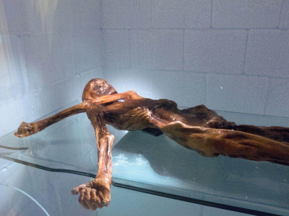 Was geschah mit dem deutschen Kletterer Helmut Simon, dessen Leiche in einem... - Bildquelle: Discovery Communications
