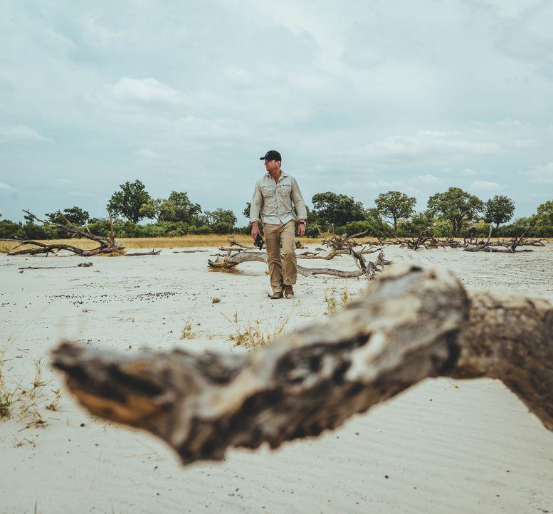 Seine nächste Reise führt Bill Weir nach Botswana. Dort geht er den Folgen des Safari-Tourismus' nach. Da die Touristen nicht nur die Schönheit der... - Bildquelle: Philip Bloom 2016 Cable News Network. A Time Warner Company. All Rights Reserved.